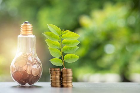 Energy_saving._stacks_of_coins_growing_in_light_bulb_and_tree_growing_on_stacks_of_coins_and_tree_nature_background._Saving,_Natural_energy_and_financial_concept.
