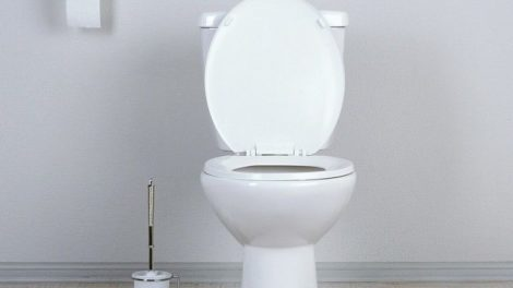 White_toilet_bowl_in_a_bathroom