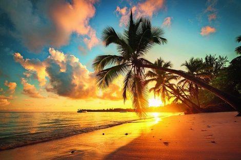 Tropical_beach_in_Punta_Cana,_Dominican_Republic