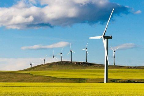 Wind_turbine_power_generation_in_canola_field_near_Pincher_Creek,_Alberta,_Canada.