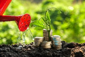 Money_growth_concept_plant_growing_out_of_coins