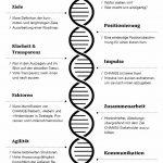 bvik_02_DNA_PRINT.jpg